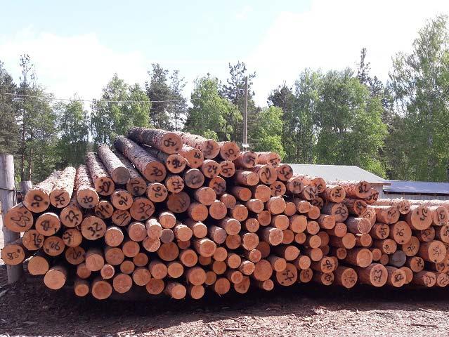 Хвойные лесоматериалы | Характеристики, особенности, цены